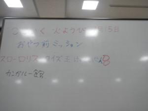 DSCN6218