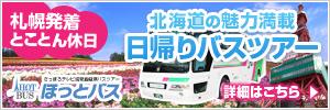 banner300_100