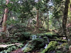 瓜割の滝 (2)