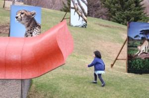 ネコちゃん目指して傾斜を駆けのぼる元気な3歳児。