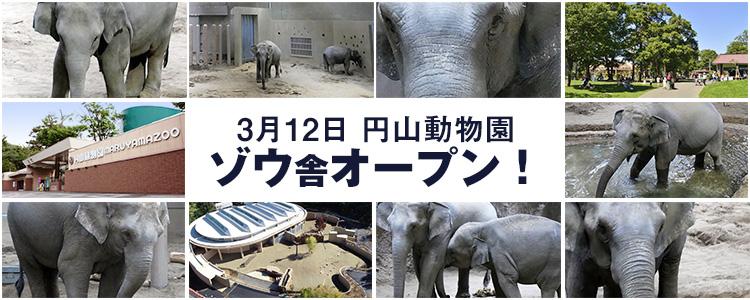 円山動物園ゾウ舎オープン