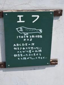 DSC_8388_R
