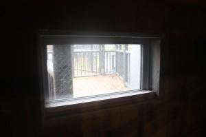 エランドの小窓から